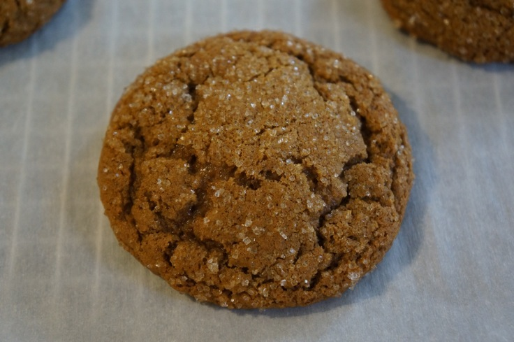 molasses cookie from https://test.pleasepassthepeas.com